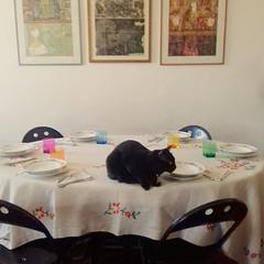 Allora?  Quando si mangia?  #pasquetta