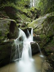 Wasserfall Wolfsschlucht Bad Kreuzen, Oberösterreich