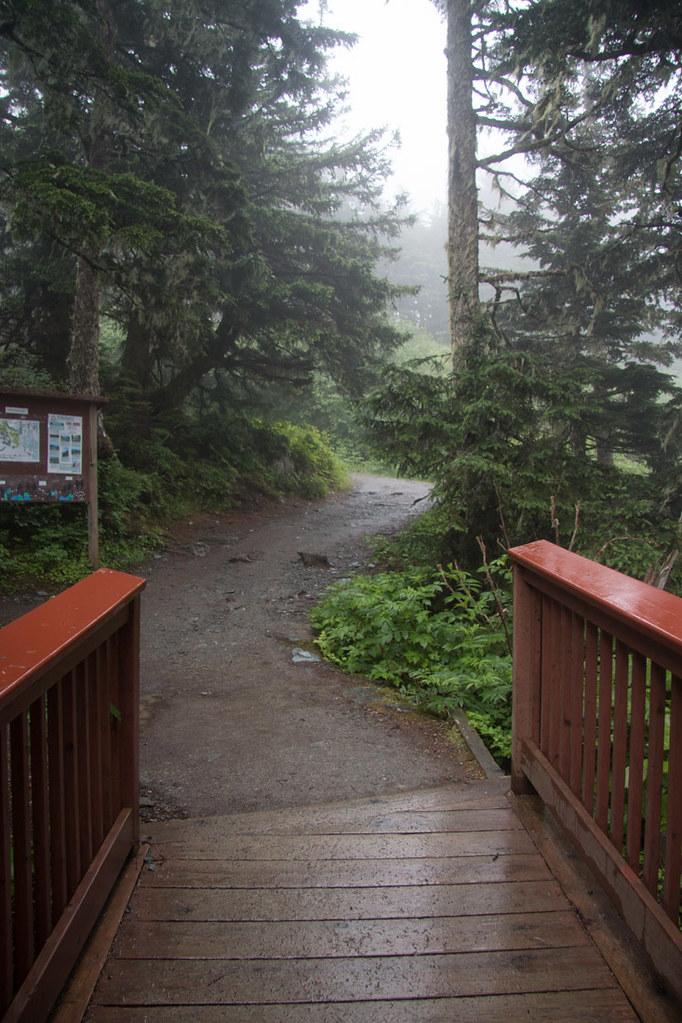 Atop mountain in Juneau