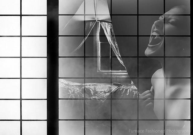 Photo artistry - Vampire