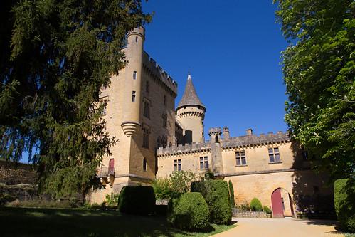 Chateau de Puymartin (24)