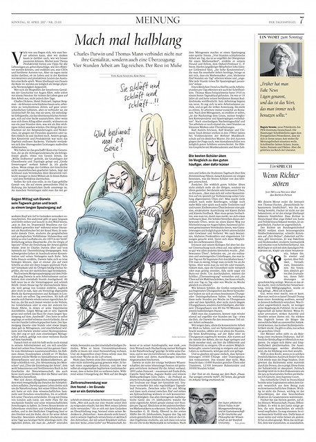 Article about REST in Der Tagesspiegel