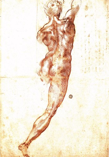Study for a Nude by Michelangelo Buonarroti 1504
