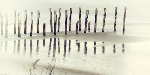 ocean wood newzealand praia beach contrast reflections postes landscape mar madera sand areia playa paisaje paisagem arena contraste poles madeira reflexos minimalist reflejos oceano novazelândia longaexposição minimalista nuevazelanda longexposures largaexposición 2013