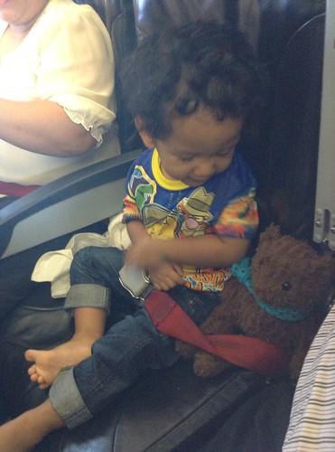 Bear pake seatbelt juga ya