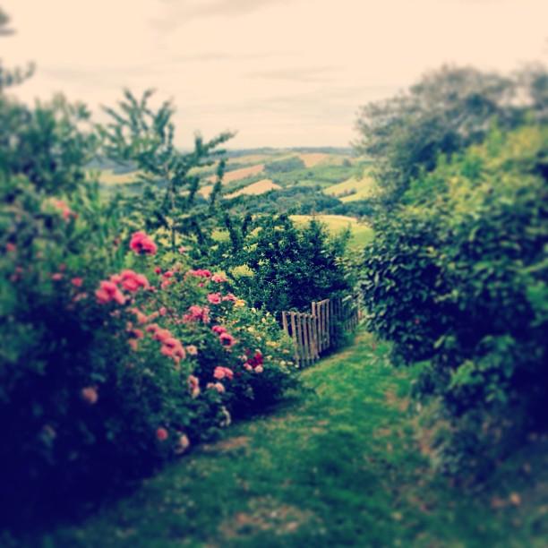 Italienska landsbygden