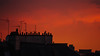 Burning Sky over Paris Chimneys