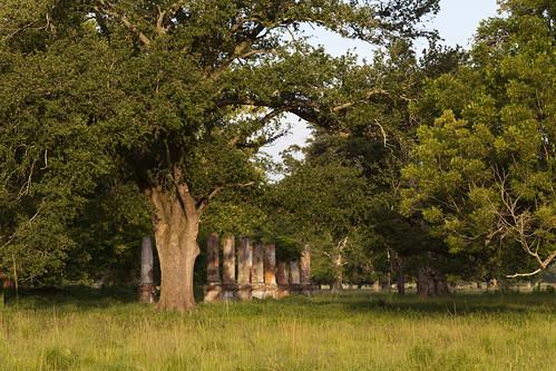 road sunset house brick canon river lens rouge eos prime louisiana ruins mark columns cottage pasture lsu ii plantation 5d usm ef baton 135mm f2l img1609