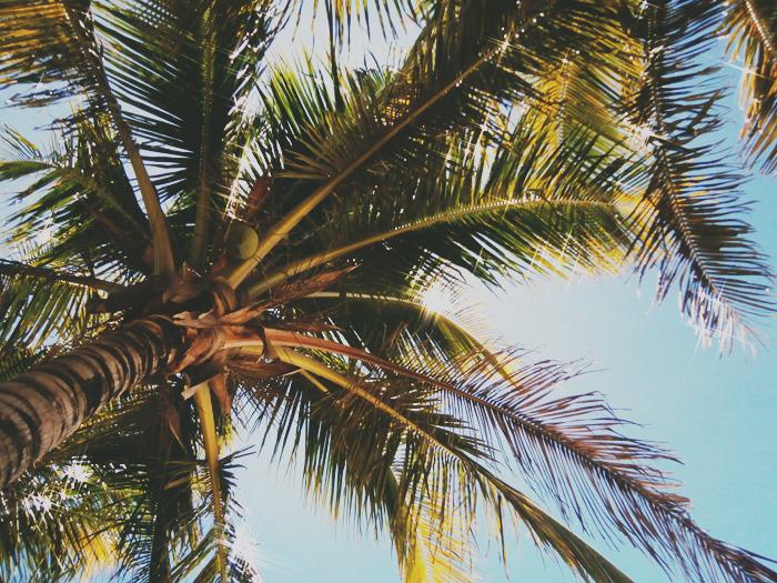 carissa-inez-beach-6res