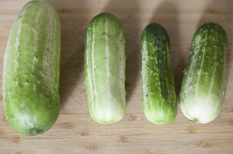 Half Sour Pickles recipe
