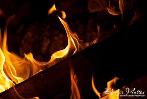 247: Fire pit