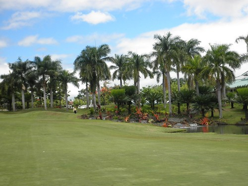 WAIKELE COUNTRY CLUB 260b