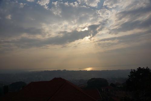 uganda kampala cassia