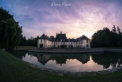 Château au paons bleus