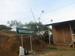 barraganete