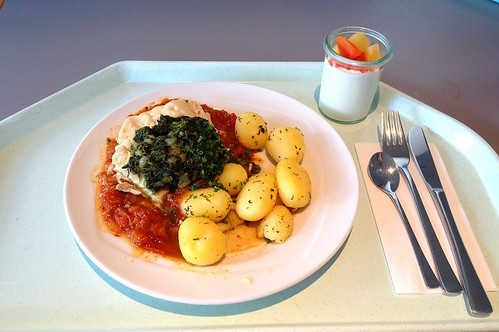 Seelachsfilet mit Blattspinat im Tomatenbett / Coalfish with leaf spinach on tomatoes