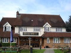 Picture of Vine, EN8 7AY
