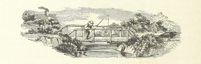 Photo:Image taken from page 296 of 'The History of Marshall County ... Illustrated' By mechanicalcurator