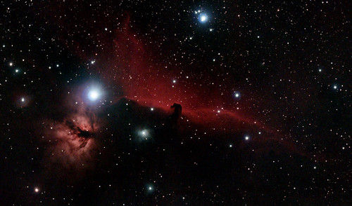 Horsehead2nights