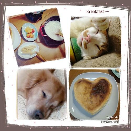 簡便的早餐,都是醃菜XD