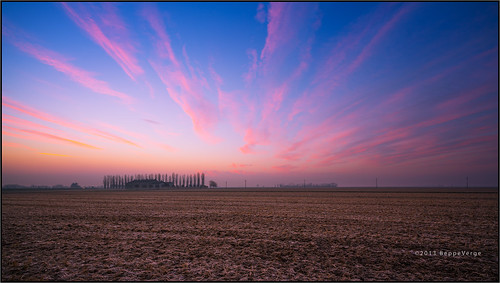 sunrise dawn alba risaie pianurapadana beppeverge cascinaagnelle