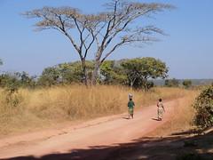 Zambia. Aldea entre Kasama y Mporokoso. Caminando por la 'carretera'