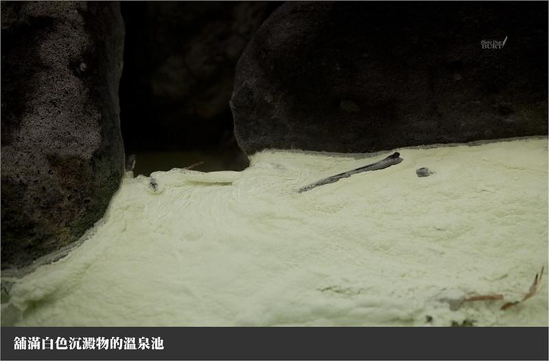 舖滿白色沉澱物的溫泉池