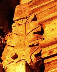 因古代人崇敬自然,而在屋中橫樑刻下樹葉,這也成為national Trust的組織標誌