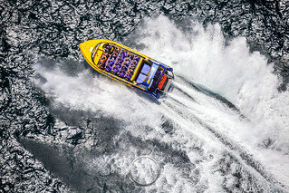 Sydney Harbour Speed Boat