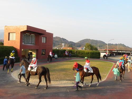 佐賀競馬場の夕方のパドック