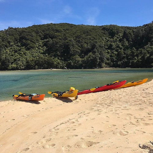 Lunch stop, kayaking through the Abel Tasman National Park. We took a bus to a big boat to a little boat to get to the kayaks, then we rowed for miles to get to this lunch spot. Awesome trip. . . #newzealand #kayak #beach #fall #southisland #southernhemis