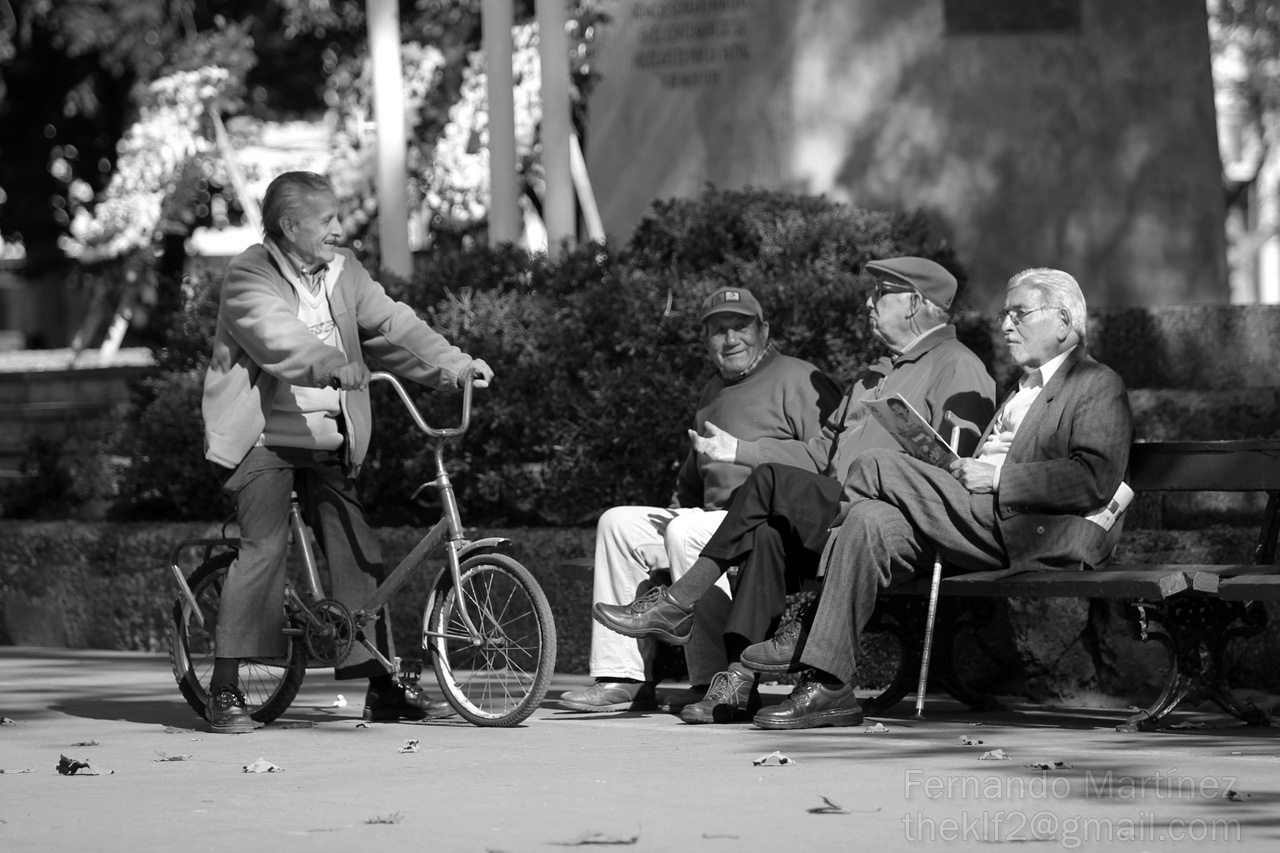 4 Viejos canonistas