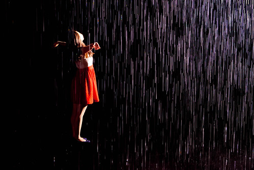 29/52 - rain room by dracisk