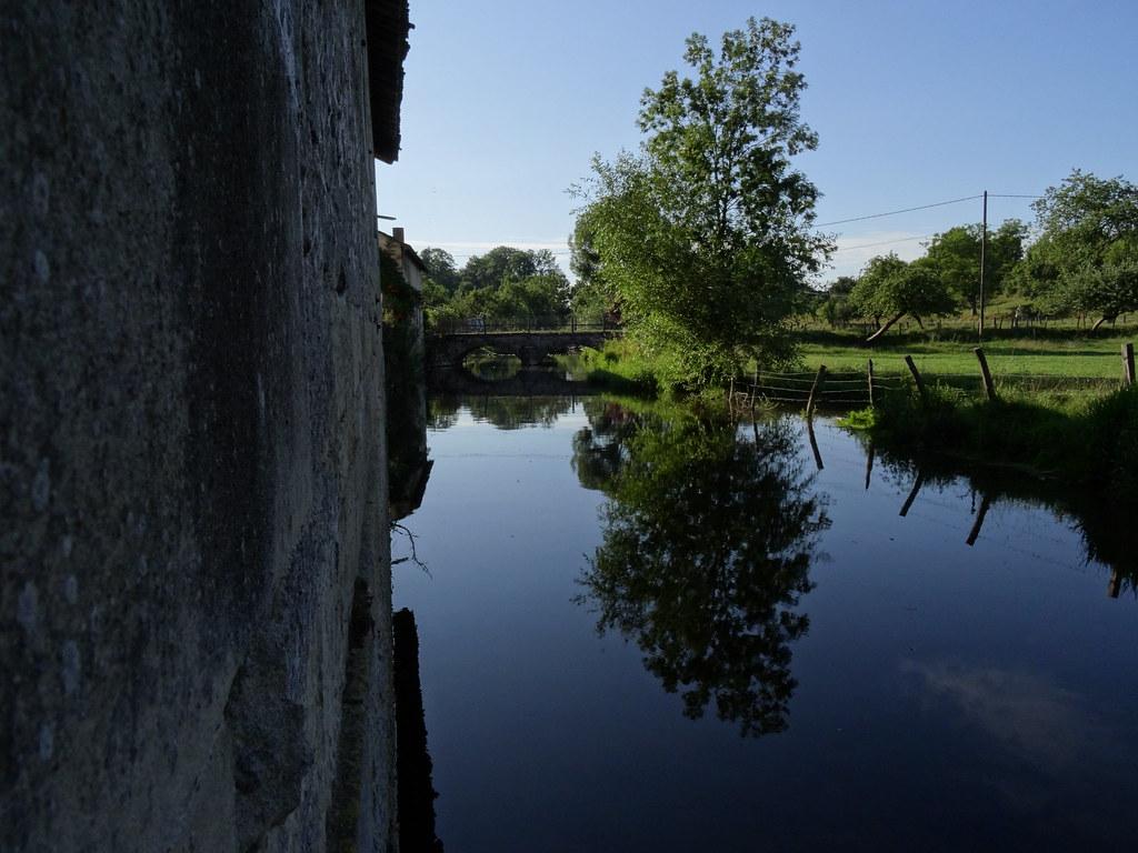 Bois De La Saulx photo menil-sur-saulx : photos pictures ménil-sur-saulx 55500