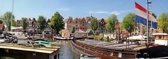 Thirteen impressive captain houses as seen from Westerdok
