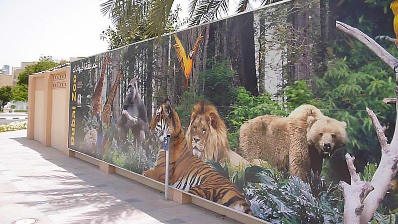 Dubai zoo's wall
