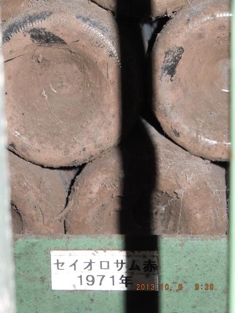 DSCF3277