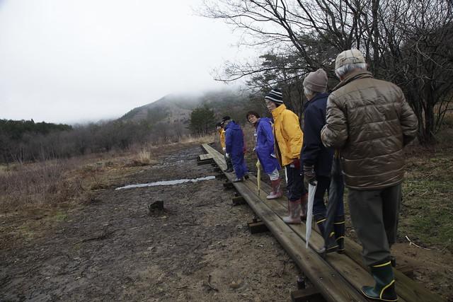 出来上がったばかりの,霧ヶ谷湿原の木道.