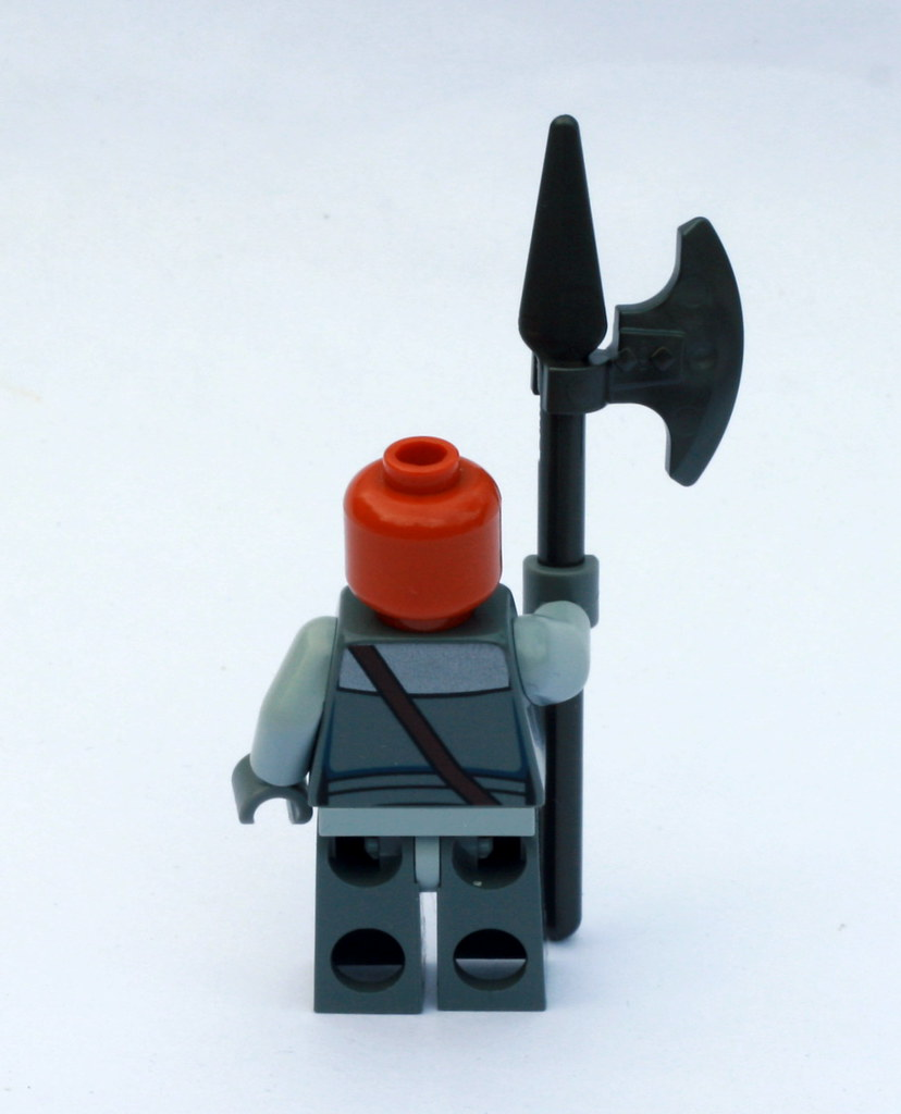 Image result for lego nikto guard