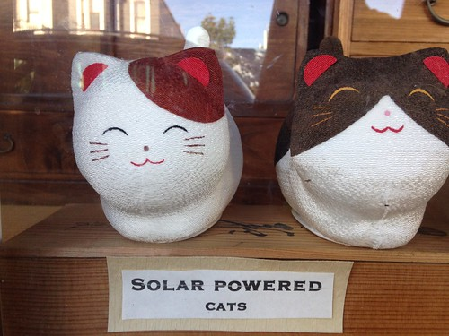 Solar Powered Cats