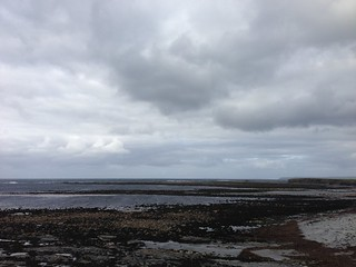 Shore at Quilty