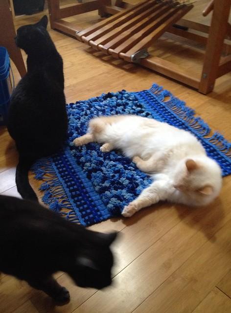 Blue rug: QA commission