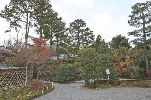 【写真】2013 紅葉 : 光悦寺/2013-12-02/IMGP4445