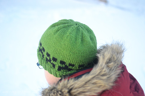 FO  Minecraft Creeper Hat and Mittens – Stitches   Spoonfuls 7d1cd8ff191