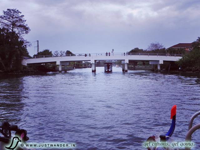 PIC: Captain Wayne White - Private Manatee Tour - Three Sisters Springs, Crystal River, Florida