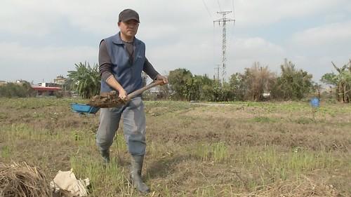 透過社區力量來支持農場,社區有安全的蔬菜來源,農場也可以獲得穩定收入。