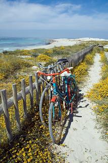 La sexta mejor playa del mundo. Foto: Jorge Jiménez.