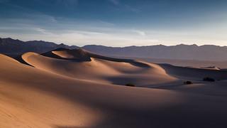 Straight Up Dunes