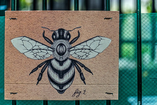 SUPPORT OUR FRIENDS THE BEES [LIFELINEPROJECTBI AND PHIBSBOROUGH LOVES BEES]-126095