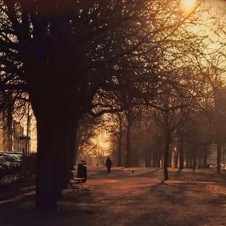 Golden dawn in Helsinki